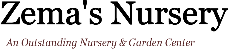 Zema's Nursery Logo